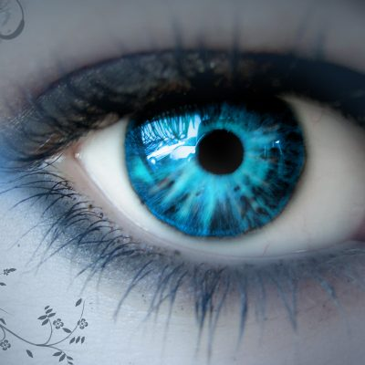 Eye Reading Training